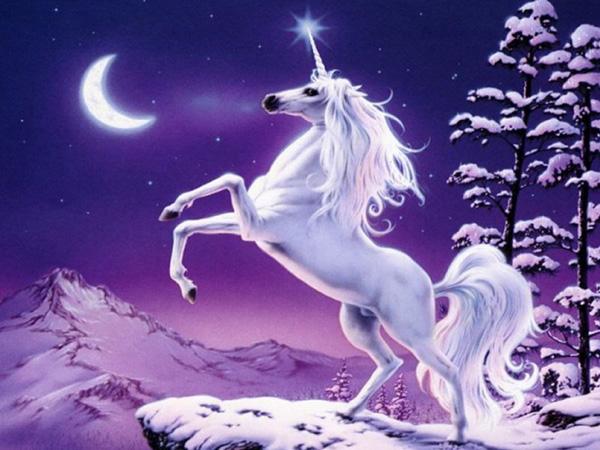 unicornlol