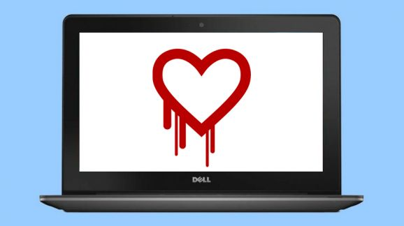 heartbleed bud