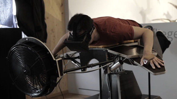 birdly simulator