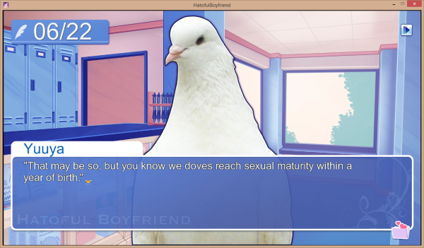 What's the age of consent for pigeons?