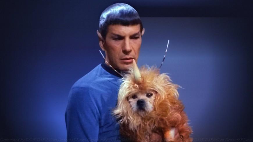leonard nimoy spock dog