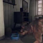 Fallout 4 Doge