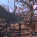Fallout 4 woodlands