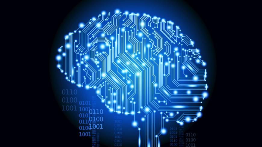 circuit brain study
