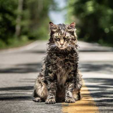The 2019 remake of Pet Sematary will be available in 4DX.