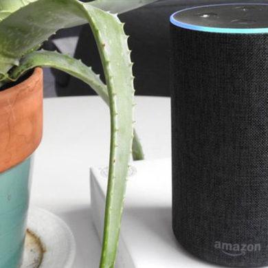 Amazon's Echo Speaker