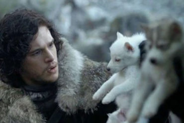 Game of Thrones Dire Wolf