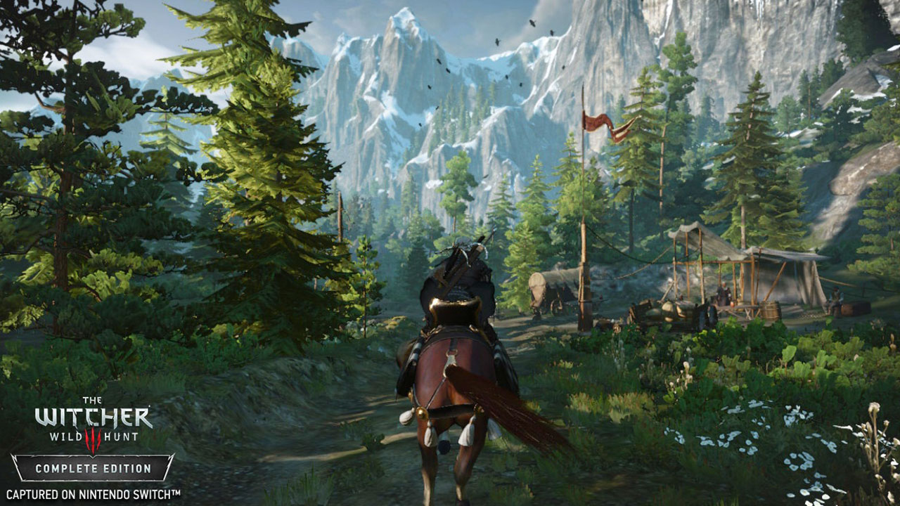 Witcher 3 Switch Environment