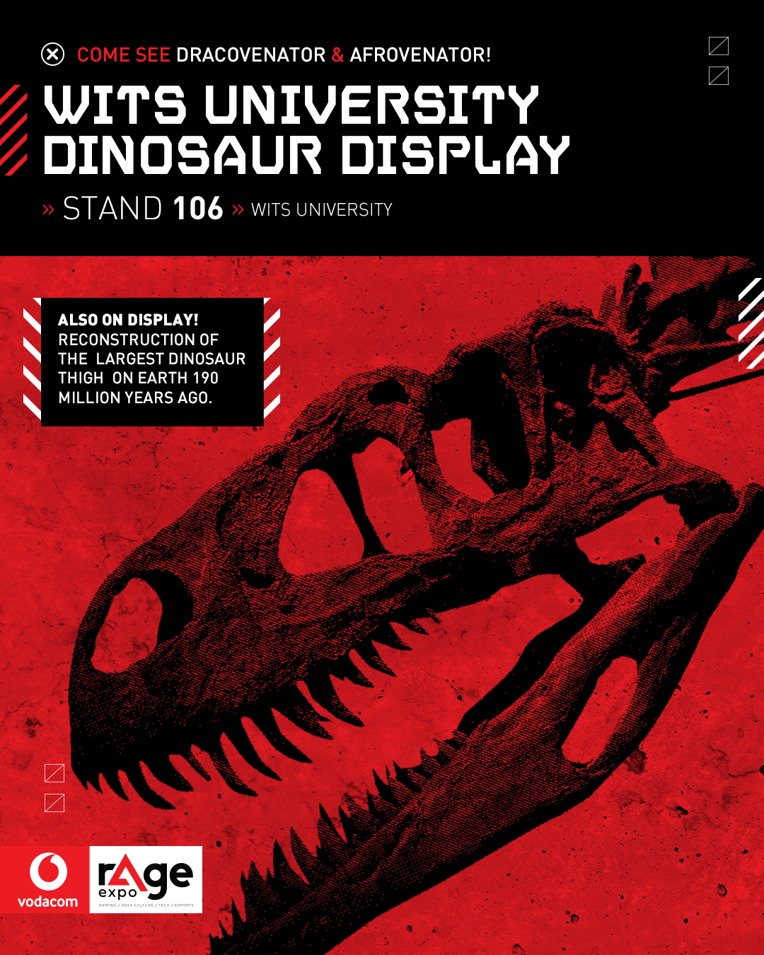 Vodacom rAge 2019 - Wits University Dinosaur Display