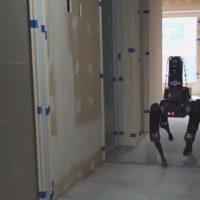 Boston Dynamics Spot Law