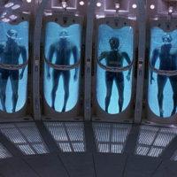 Event Horizon Stasis
