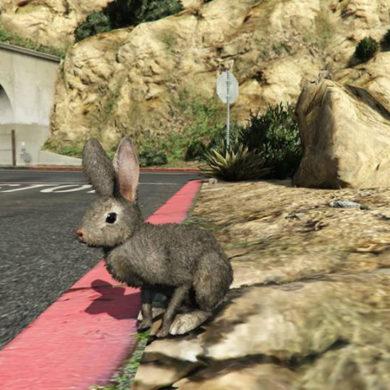 Grand Theft Auto Online Peyote Rabbit