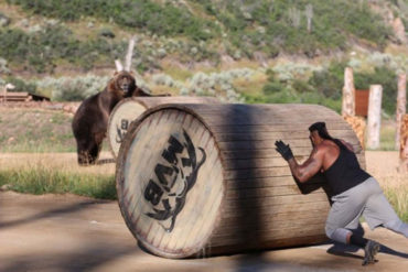 Man vs. Bear Discovery Channel