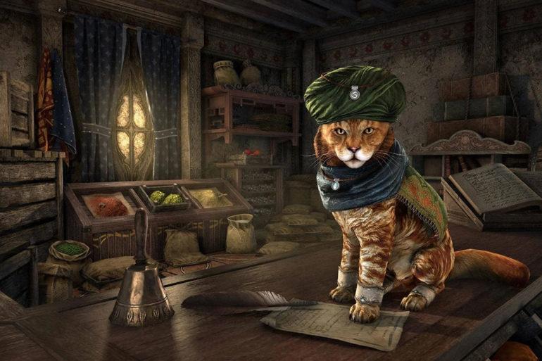Elder Scrolls Online Khajiit Merchant
