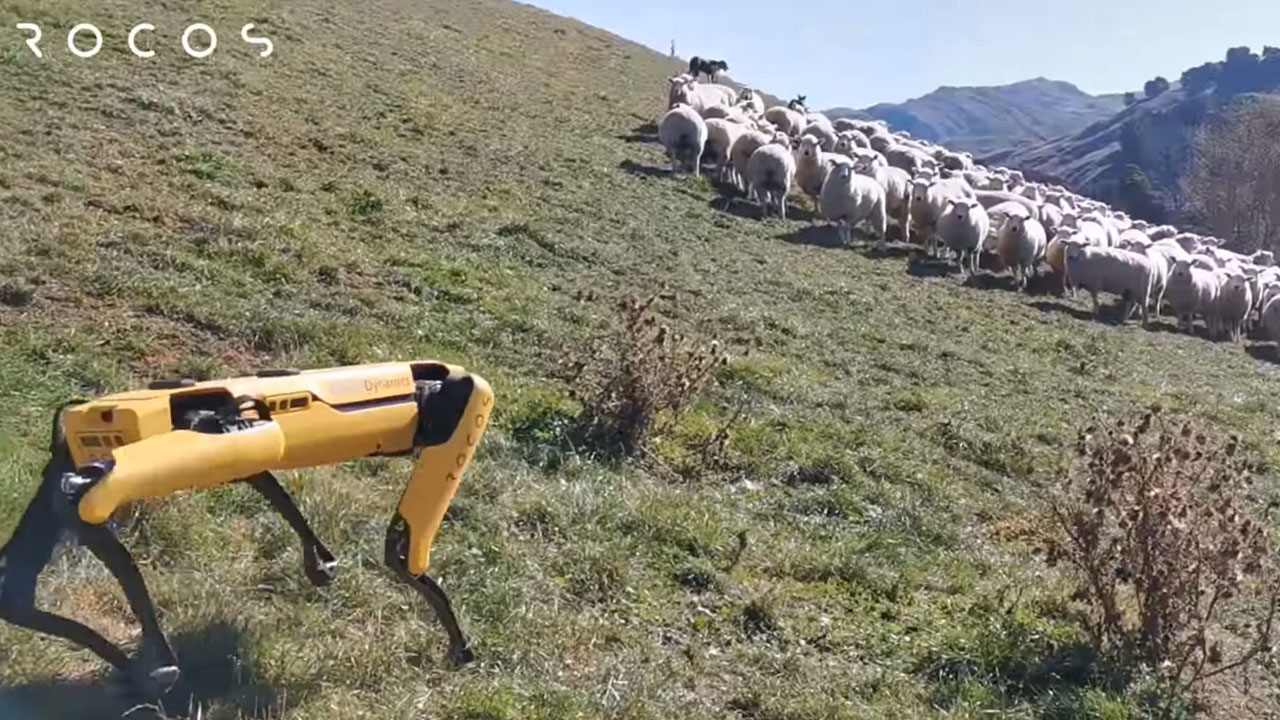 Boston Dynamics Sheep Spot